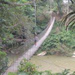 sumatra pont