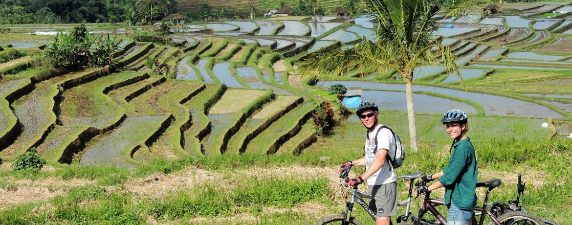 Riders in the rice fields in Indonesia