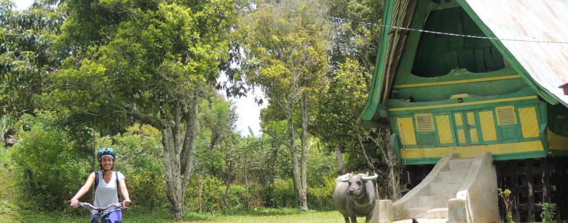 Be free in the countryside of Indonesia