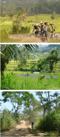 Rizières, montagnes et randonnées à vélo