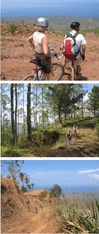 Randonnée à vélo avec Archipelago Adventure de Kintamani à Telaga Emas